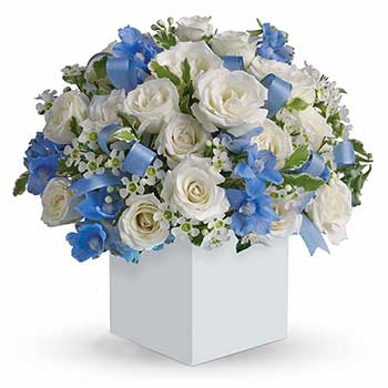 Send handsome new baby boy flowers in blue