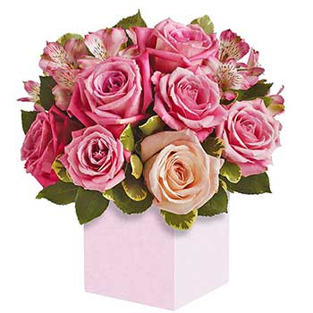 Pink rose box of flowers