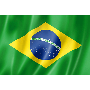Send flowers to Brazil