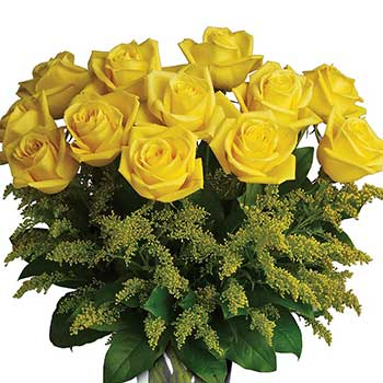 Buy sensational bright yellow roses