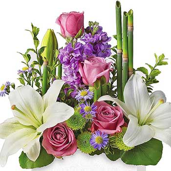 Buy modern chic designer flowers