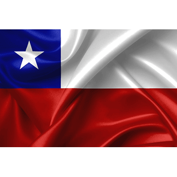 Send flowers to Chile