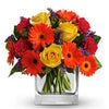 Send bold beautiful citrus flowers vase included