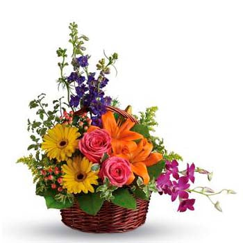 Order bright basket of colourful flowers