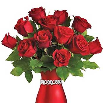 Send cupids kiss 12 rose arrangement