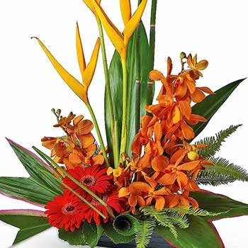 Send tropical flower dish designer table arrangement
