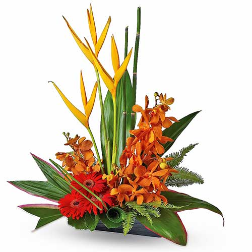 Tropical Flower Dish Designer Table Arrangement