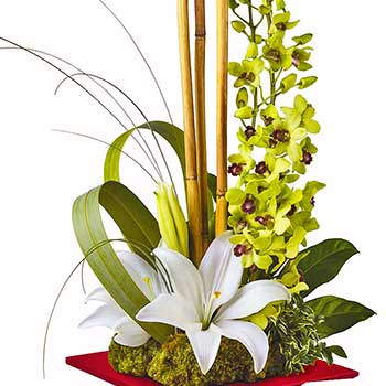 Exotic Orchid & Lily Flower Dish