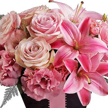 Buy fabulous flowers in blushing pink