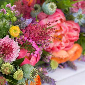 Send best value for money bouquet of bright flowers