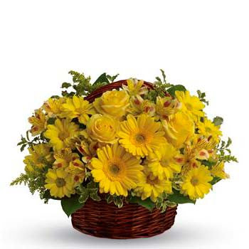 Send yellow sunshine flower basket