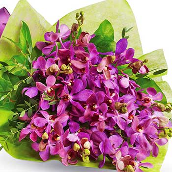 Buy lavender orchid bouquet wrapped & tied