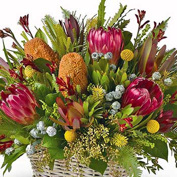 Buy long lasting Australian native flower basket