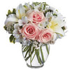 Buy pretty pastel flowers