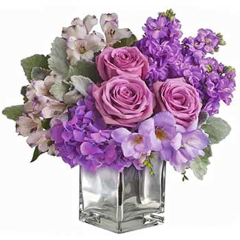 Send classy & chic lavender flowers