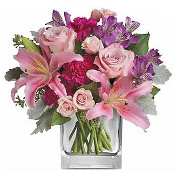 Send bright & vivid flowers for a special day