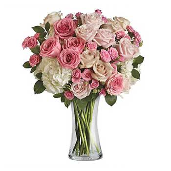 Luxurious mothers day rose's & hydrangea in a tall vase