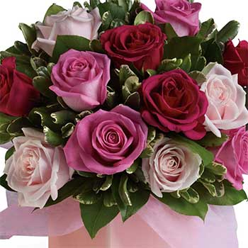 Buy blushing mixed roses gift box