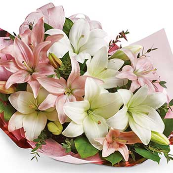 Buy pretty pink & white pastel lilies - Best seller