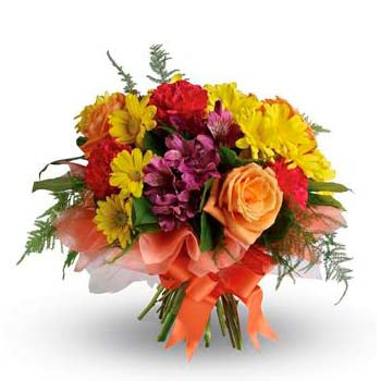 Buy magnificent colourful poesy of flowers