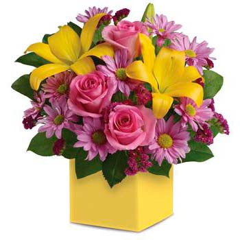 Buy vibrant serenade romantic flower box