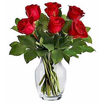 Buy six red roses in a vase | Valentine Flowers
