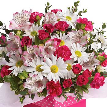 Send spring flower celebration surprise box