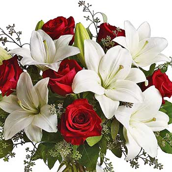 Send star of Bethlehem Christmas flowers