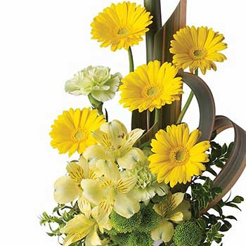 Sunny Celebration Flower Display