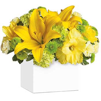 Send sunburst yellow flowers
