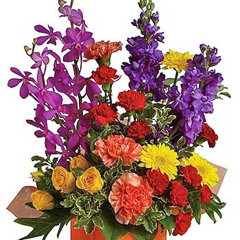 Tall Bright Flowers Box Arrangement