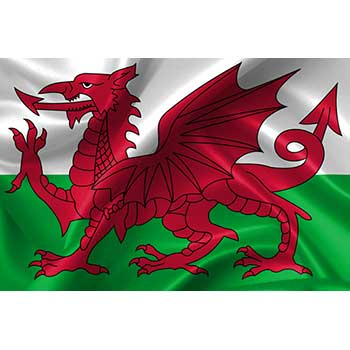 Send flowers to Wales