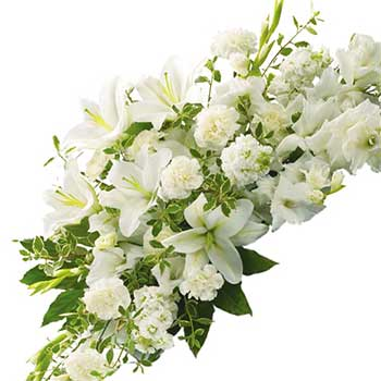 Send a white flower casket spray coffin display for a funeral or ANZAC day