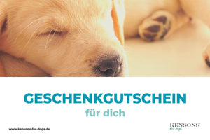 Gutschein - KENSONS for dogs