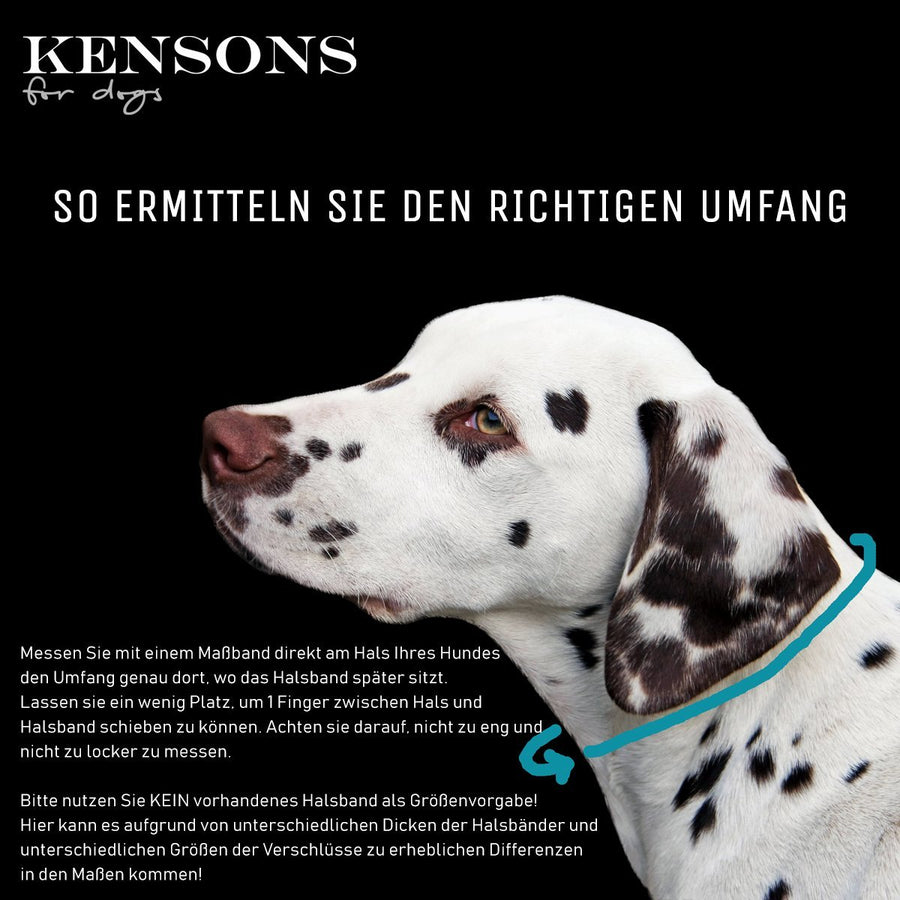 Halsband Korrektur - KENSONS for dogs