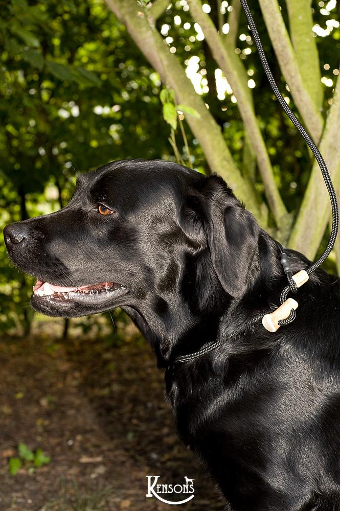 Retrieverleine 6mm Sporty | Schwarz! Die schmale Blacky - KENSONS for dogs