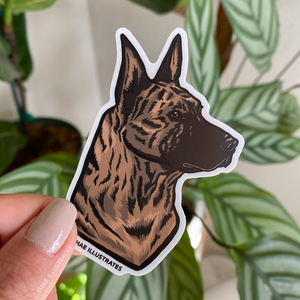 Gold Brindle Dutch Shepherd Sticker