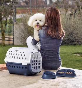 Travel Chic Carrier