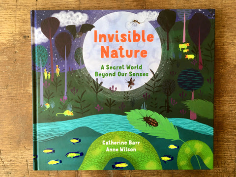 Invisible Nature, Catherine Barr, Anne Wilson, Otterbarry Books, 2020