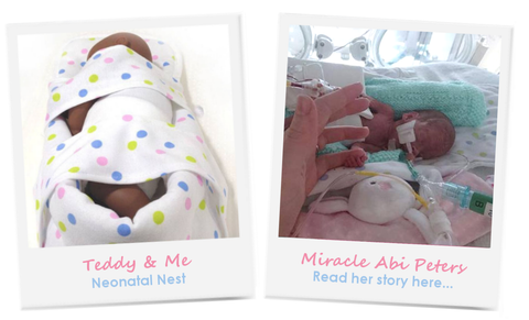 teddy and me developmental care neonatal nest