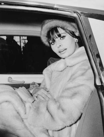 vintage photo of actress sophia loren in fur winter coat