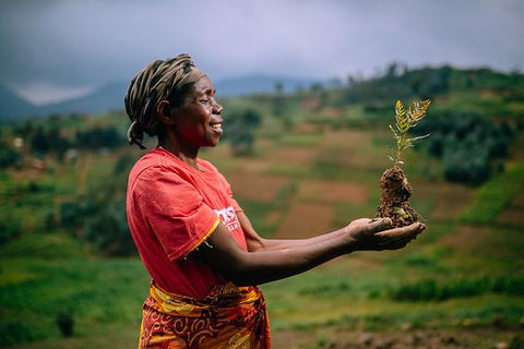 Giving back planting a tree