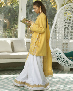Roshni (ZF-06) - [Fayroz Eid Collection]