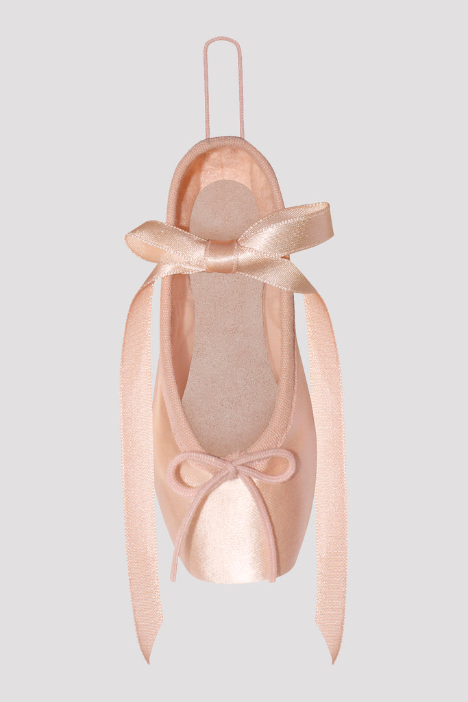 Decorative Pointe Shoe