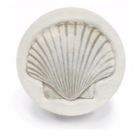 Scallop Shell Drink Coaster
