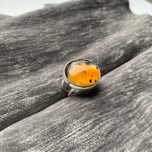Montana Agate cocktail ring in sterling silver by Knucklekiss Jewelry