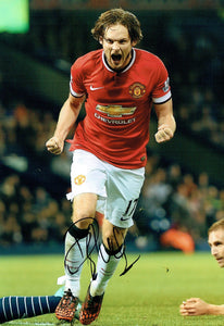Daley Blind - Manchester United - 12 x 8 Autographed Picture
