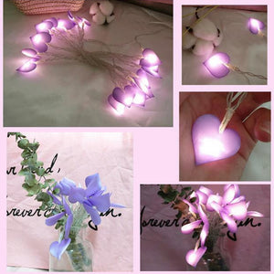 Heart String Light