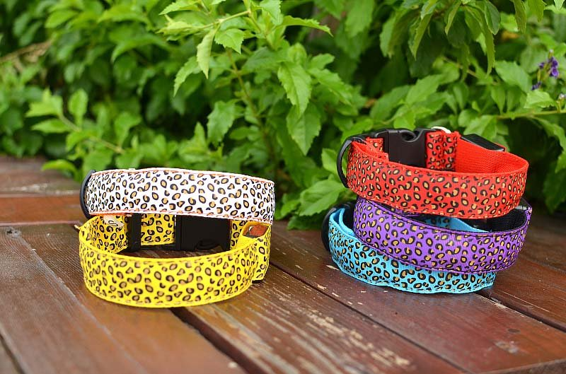 LED Pet Dog Colorful Collar