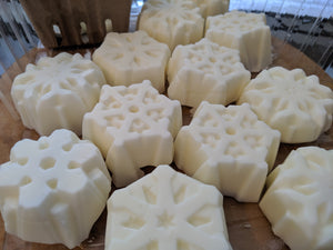 2.5 oz Shower Conditioner Bars (hair & body)